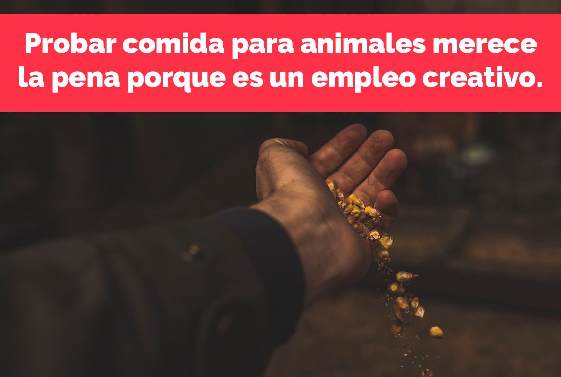 Probar comida para animales merece la pena porque es un empleo creativo